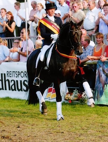 The 2013 elke stallion Elke the